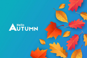 Fall Affiliate Marketing