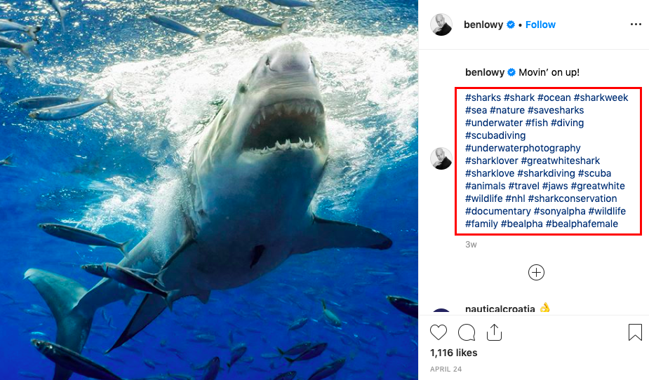 Example of an Instagram influencer using hashtags on a post