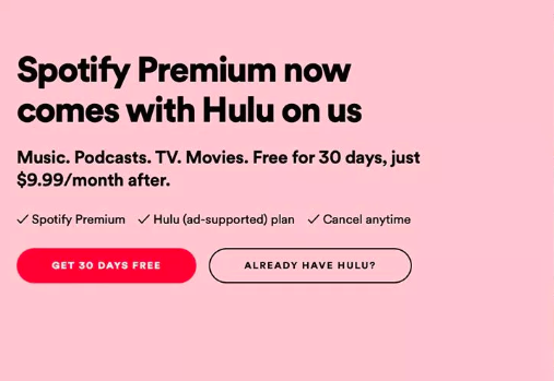 How the sales copywriter at Spotify created a great product bundle with Hulu
